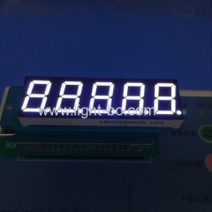 "Ultra white 0.56"" 5 digit 7 segment led display for digital temperature indicator"