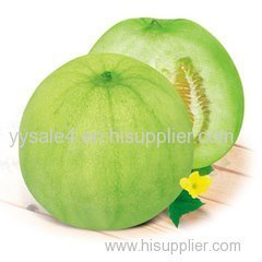 Top Quality 10:1 Cucumis Melo Extract/ Muskmelon Extract/Cucumis Melo Inodorus Fruit Extract