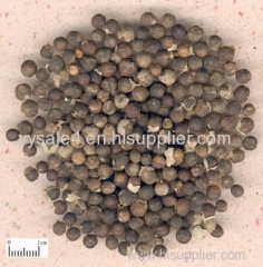Bulk Supply 0.5% Agnuside 10:1Vitex Agnus Castus Extract/Fructus Viticis P.E. Chaste Berry Extract