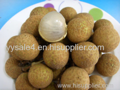 100% natural hot sale best price Longan Extract 10:1