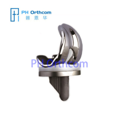 Standard Total Knee Replacement Total Hip and Knee Replacement System Knee Implant Femoral and Tibial Implant
