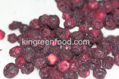 freeze dried blueberry whole wild type