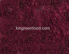 gevriesdroogde blackberry poeder