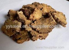 Wholesale 10:1 Lovage Extract/ Szechwan Lovage Rhizome P.E powder