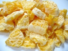 freeze dried orange slices