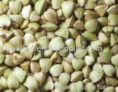 Factory supply bulk Total Isoflavone 30% 10:1 Buckwheat Extract