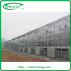 Commercial tempered glass greenhouse for sale