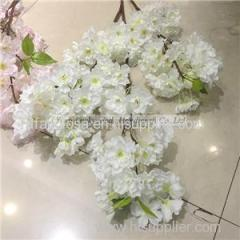 Cherry Blossom Product Product Product