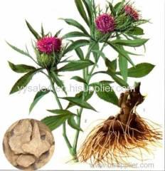 Pure natural Langehead Atractylodes Rhizome Extract/Atractylodes Macrocephala Extract