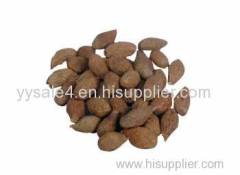 Professional supply high quality Scaphium scaphigerum Extract/Sterculia lychnophora Extract