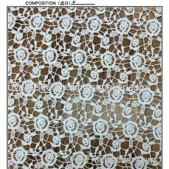Polyester Embroidery Lace/lace Fabric/swiss Lace (S1560)
