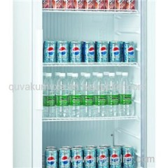 1 Door Direct Cooling Plastic Liner Upright Showcase
