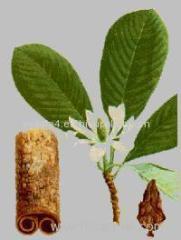 China factory manufacturer Magnolol 40%-98% Magnolia P.E. Extract