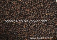 High Quality Pure natural & organic Piperine90% 95% 98%/ Black pepper P.E. Extract