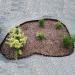 Landscaping Corrugated Plastic Garden Fence