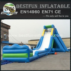 Hippo slide inflatable toboggan slide for sale