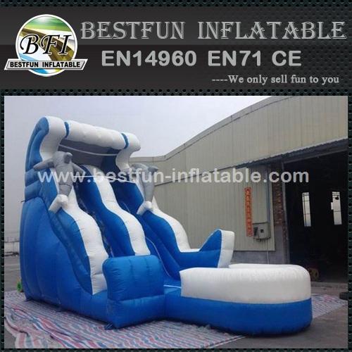 Dolphin Jumbo Water Slide Inflatable