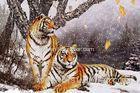 Winter Tiger Plastic Printing Services Nice 3D Lenticular Waterproof