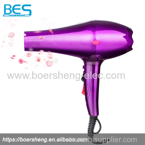 Electric Professional Home Powerful Hair Dryer with Cold Shot Function