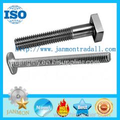 T bolt T bolts Special T bolt Special T bolts T type bolt T type bolts Steel T bolt Steel 304 T bolt T head bolt T bolts