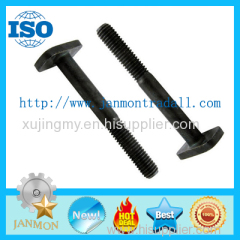 T bolts Special T bolt Special T bolts T type bolt T type bolts Steel T bolt Steel T bolts T head bolt Black steel TBOLT