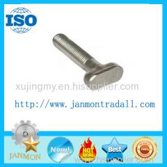 T boltT bolts Special T bolt Special T bolts T type bolt T type bolts Steel T bolt Steel T bolts T head bolt T bolts 304