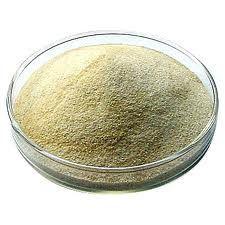 Oxandrolone CAS 53-39-4