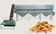 Raw Peanut Grading Machine