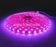 5050SMD LED Flexible strip