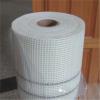 Coated alkali resistant fiberglass mesh