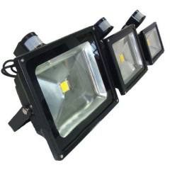 PIR Sensor Motion 30W Led Flood Light COB Led IP65 AC100-265V
