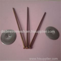 High Quality Heat Preservation Nail Manufacture from Anping