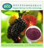 BCC Mulberry Fruit Extract