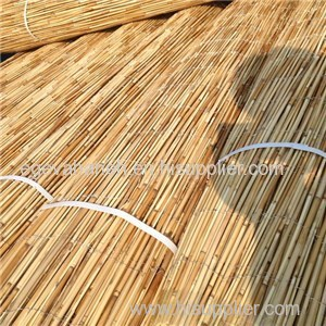 Reed Fence Product Product Product