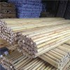 Natural Bamboo Fence Product Product Product