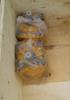 shantui SD16 hydraulic gear pump 07432-72101 07432-71203 gear shift oil pump 16y-61-01000