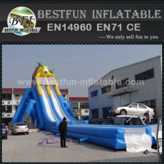 Jumbo inflatable water slide
