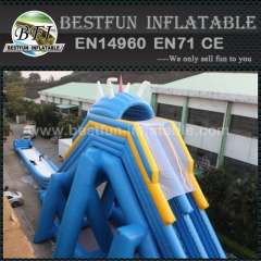 Hippo jumbo inflatable hippo slide