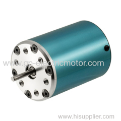 Electric Brushless DC Motor