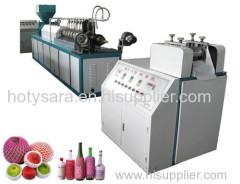 pe fruit net production line