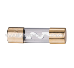 AGU Fuse gold plated in two ends