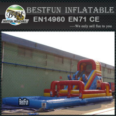 Inflatable angry animal bird slide