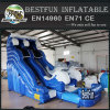 Dolphin Inflatable Water Slide with pool