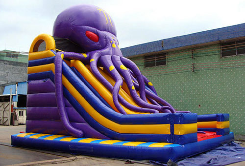 Octopus Large Plastic Water Slide For Sale