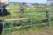 5Bars Powder Creen Ranch Horse Panels