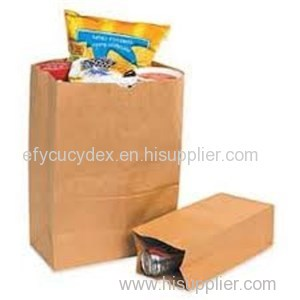Diversified Latest Designs Grocery Paper Bag