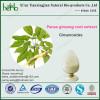 ginseng extract powder Ginsenosides