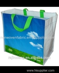 pp Spunbond fabric bag