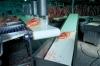 Oil resistant conveyor cover belt