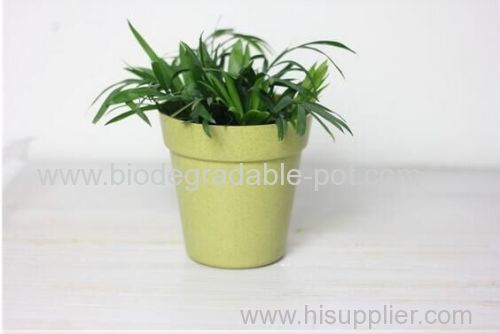 eco-friendly Colorful bamboo flower pot